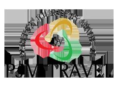 PJM Travel